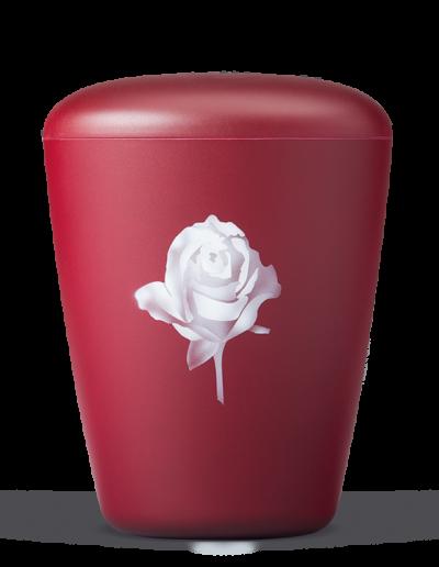 26310 Weinrot Velour, Airbrush: Rose
