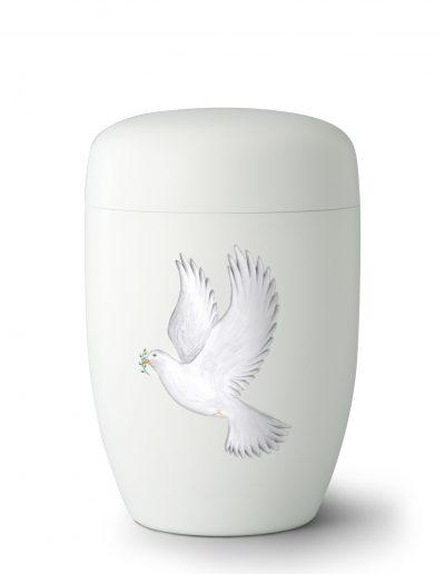 2/6 F White Pigeon - Taube